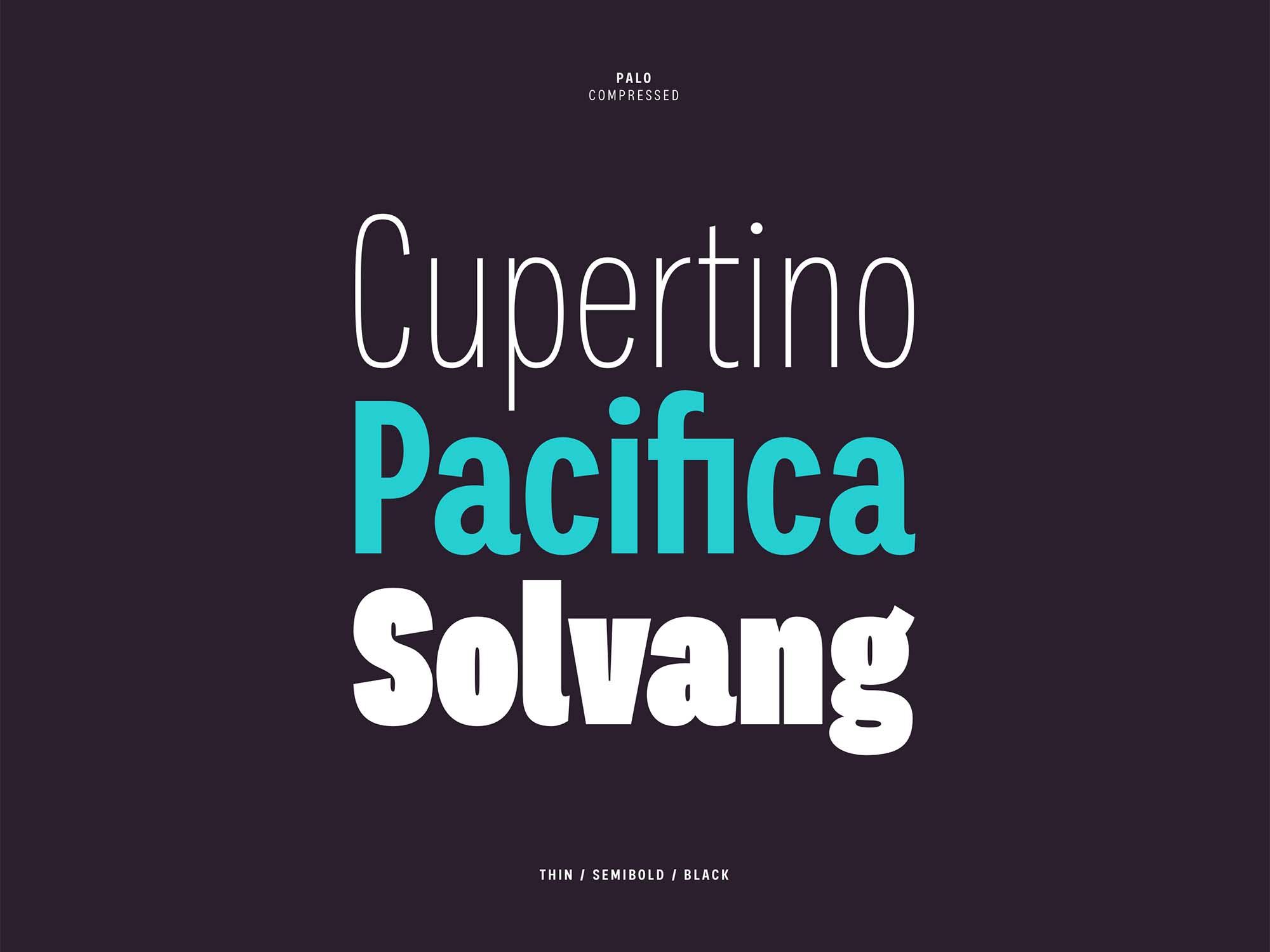Palo Sans Font 2