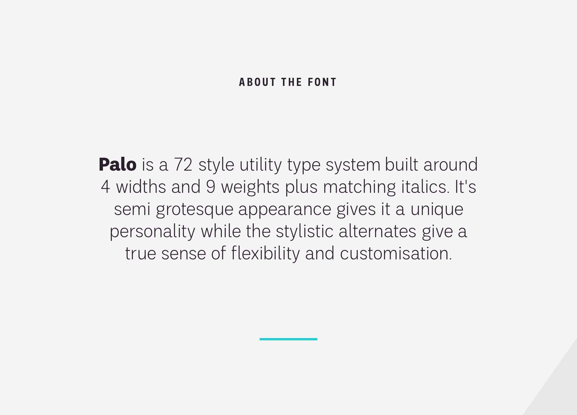 Palo Sans Font 5