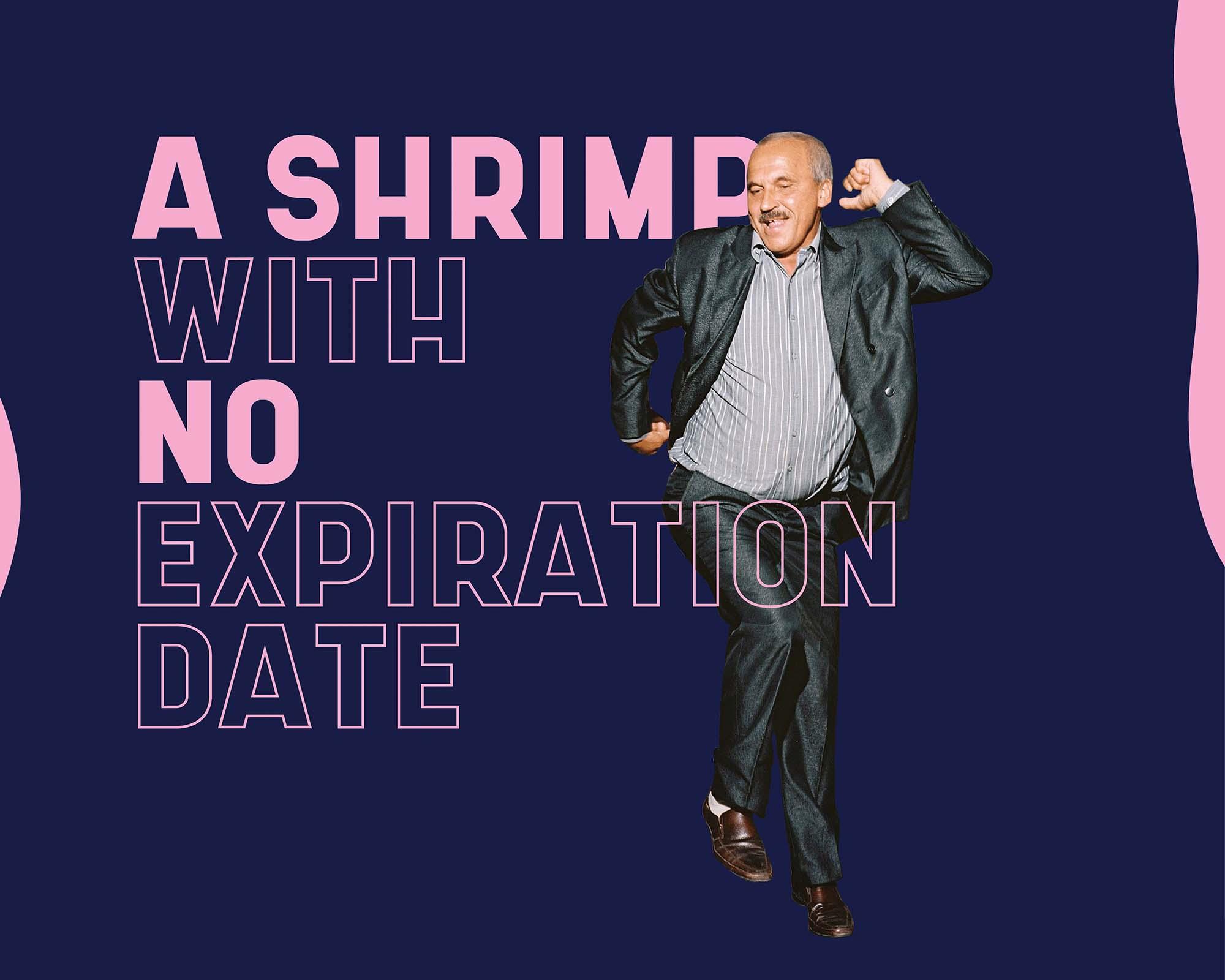 Shrimp Sans Serif Typeface 2