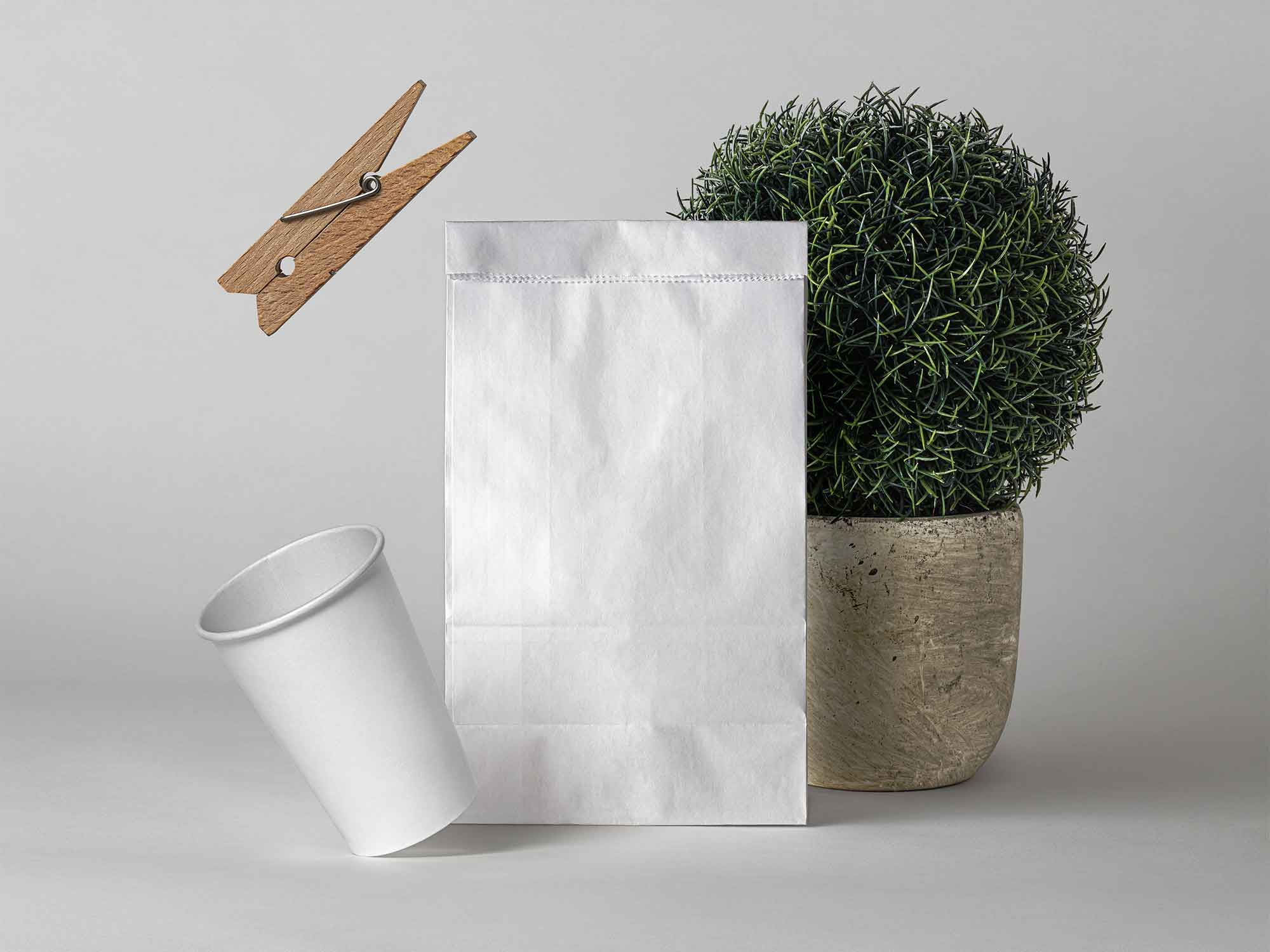 Paper Bag Mockup Showcase 2