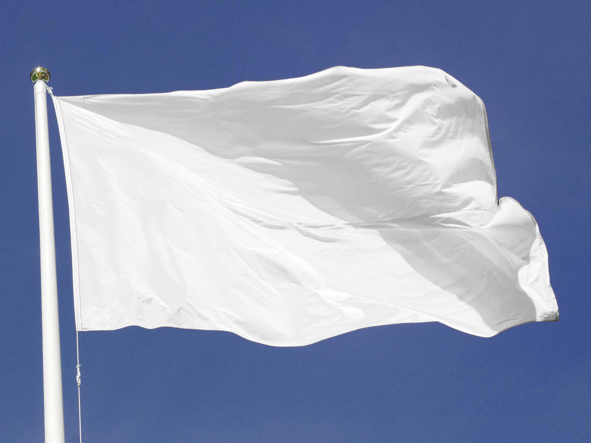 Smart Flag Mockup 2