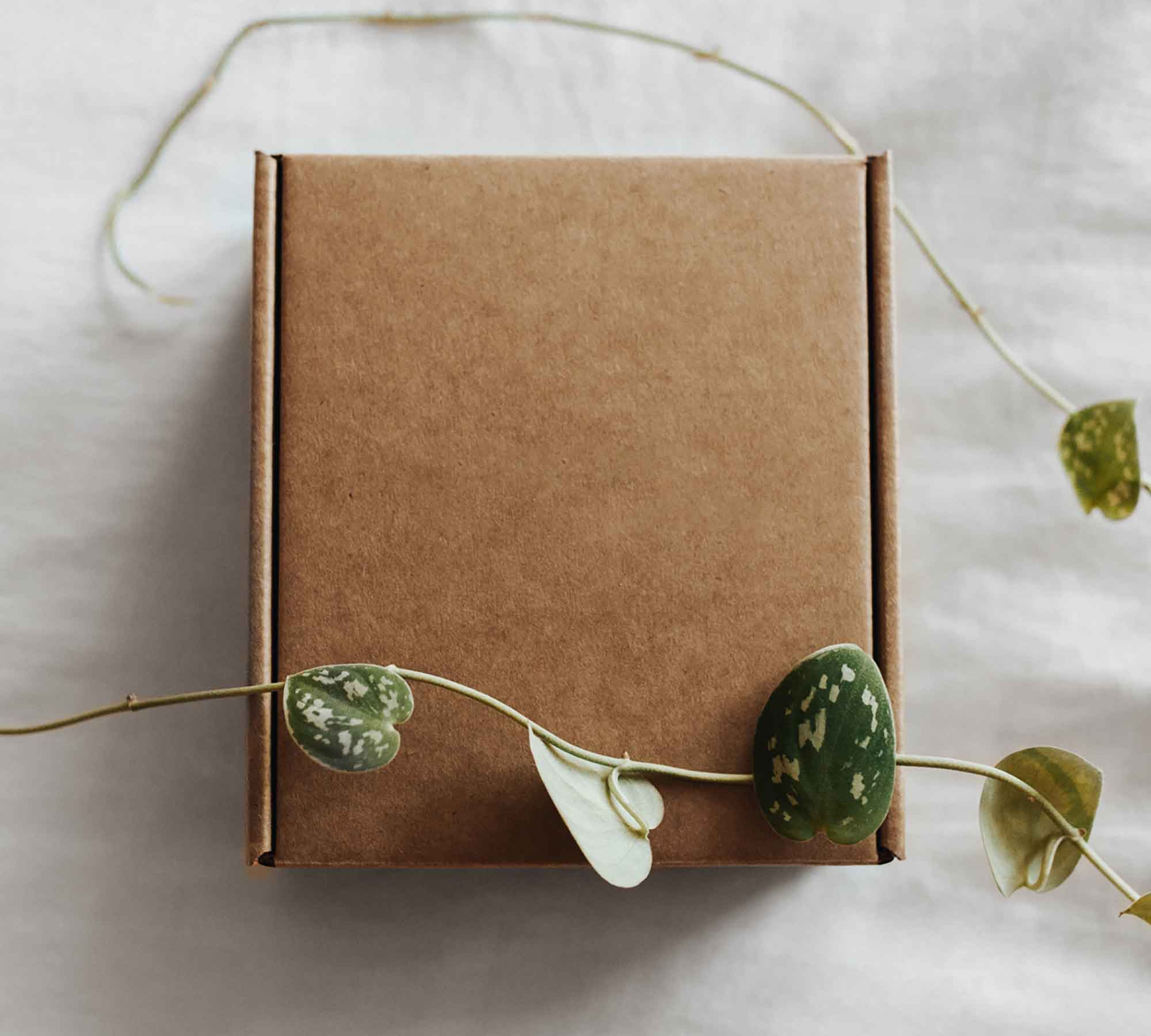 Craft Paper Box Mockup 2