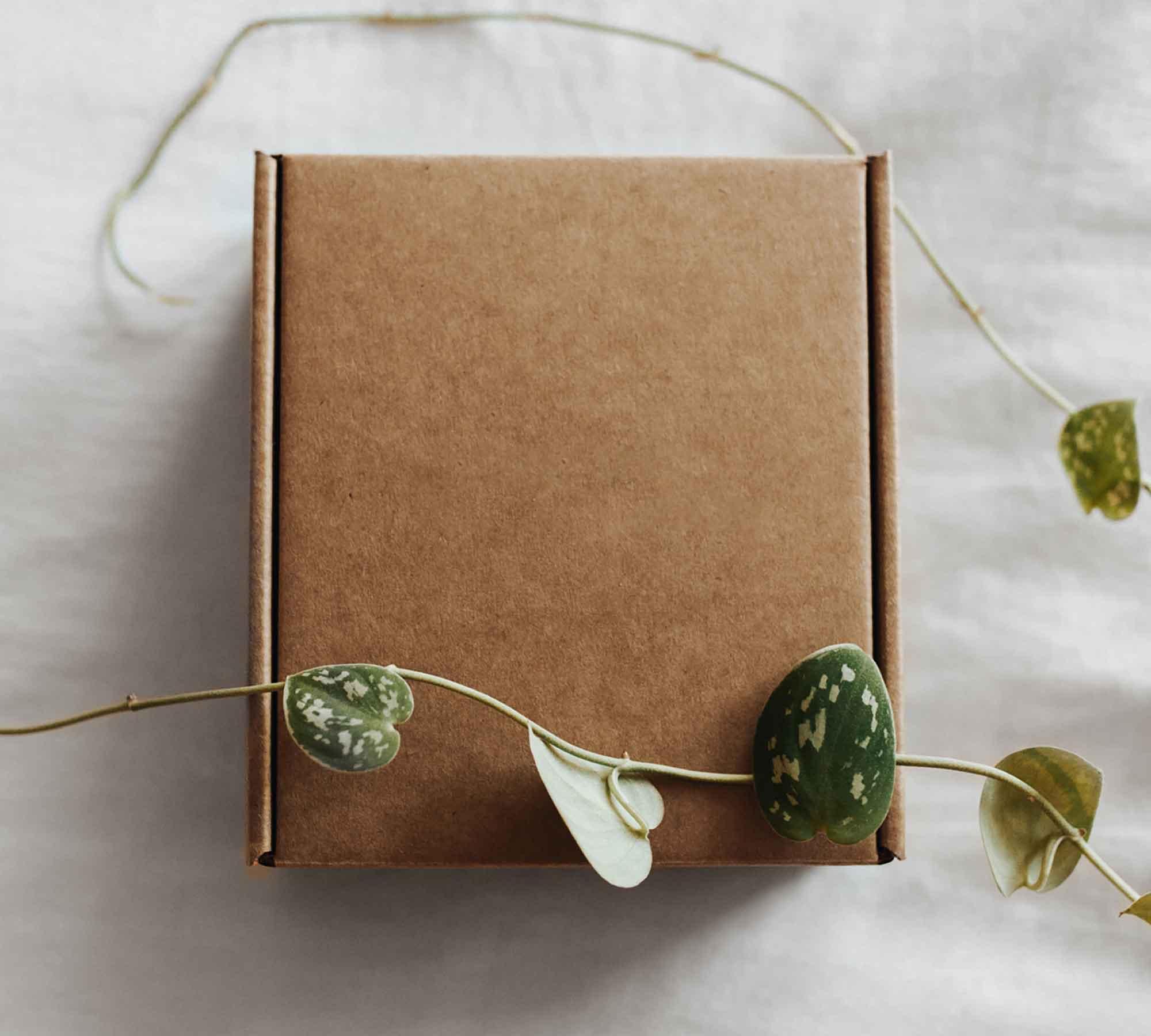 Craft Paper Box Mockup 2