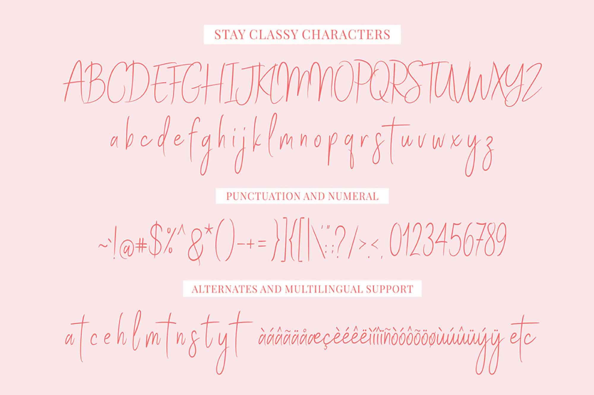 Stay Classy Script Font 5
