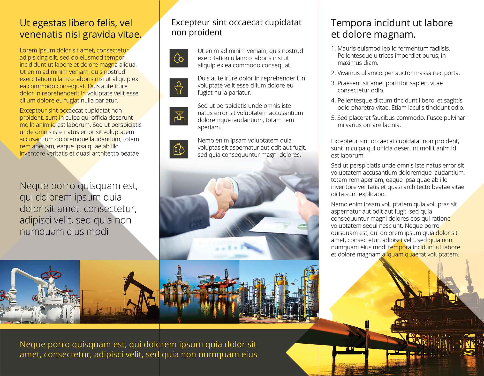 Trifold Flyer Template 2