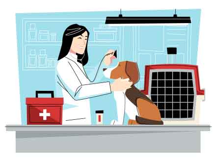 Veterinarian Vector Illustration