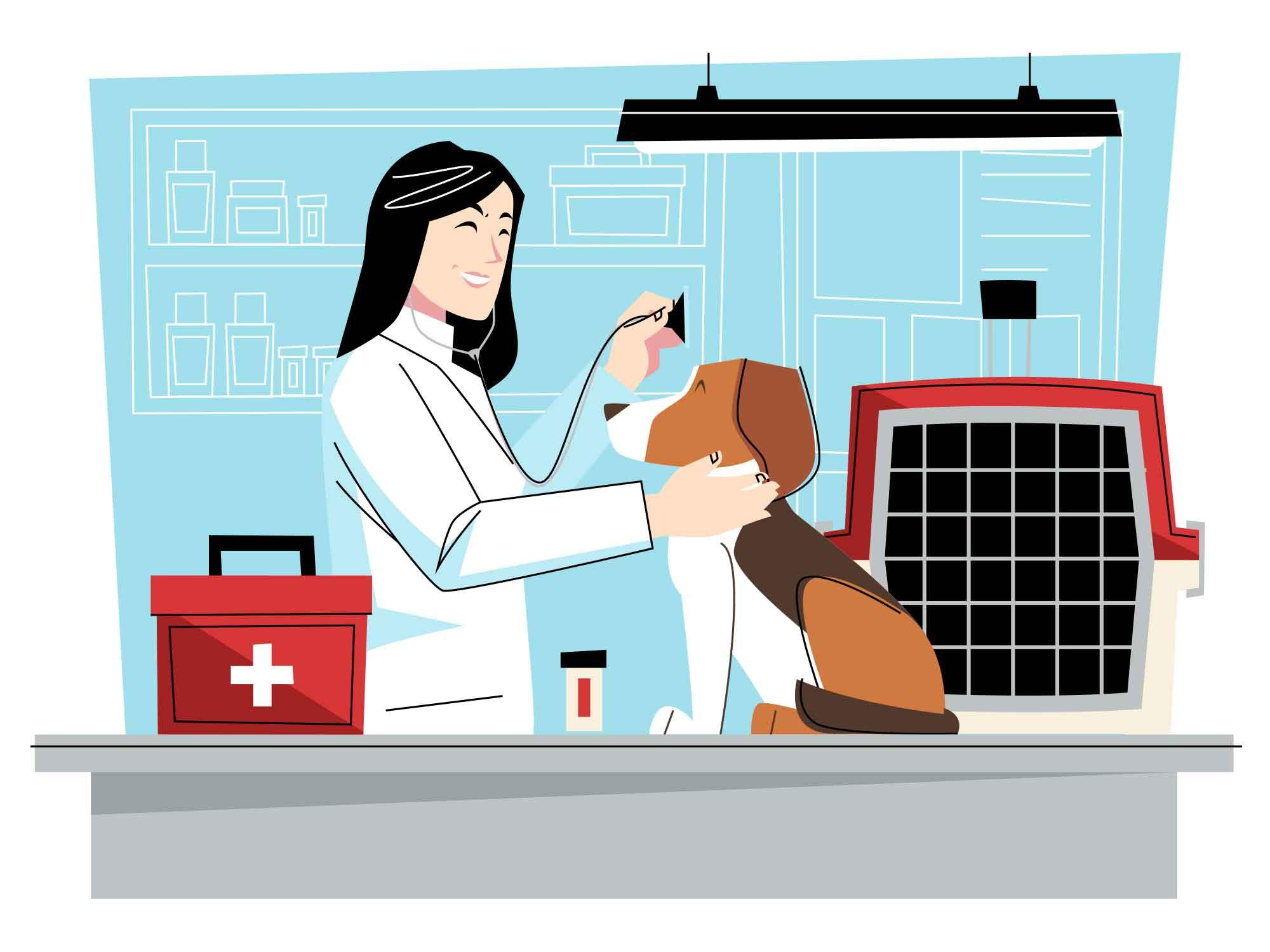 Veterinarian Vector Illustration