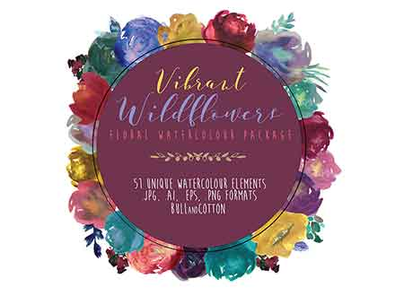 Vibrant Wildflower Design Elements