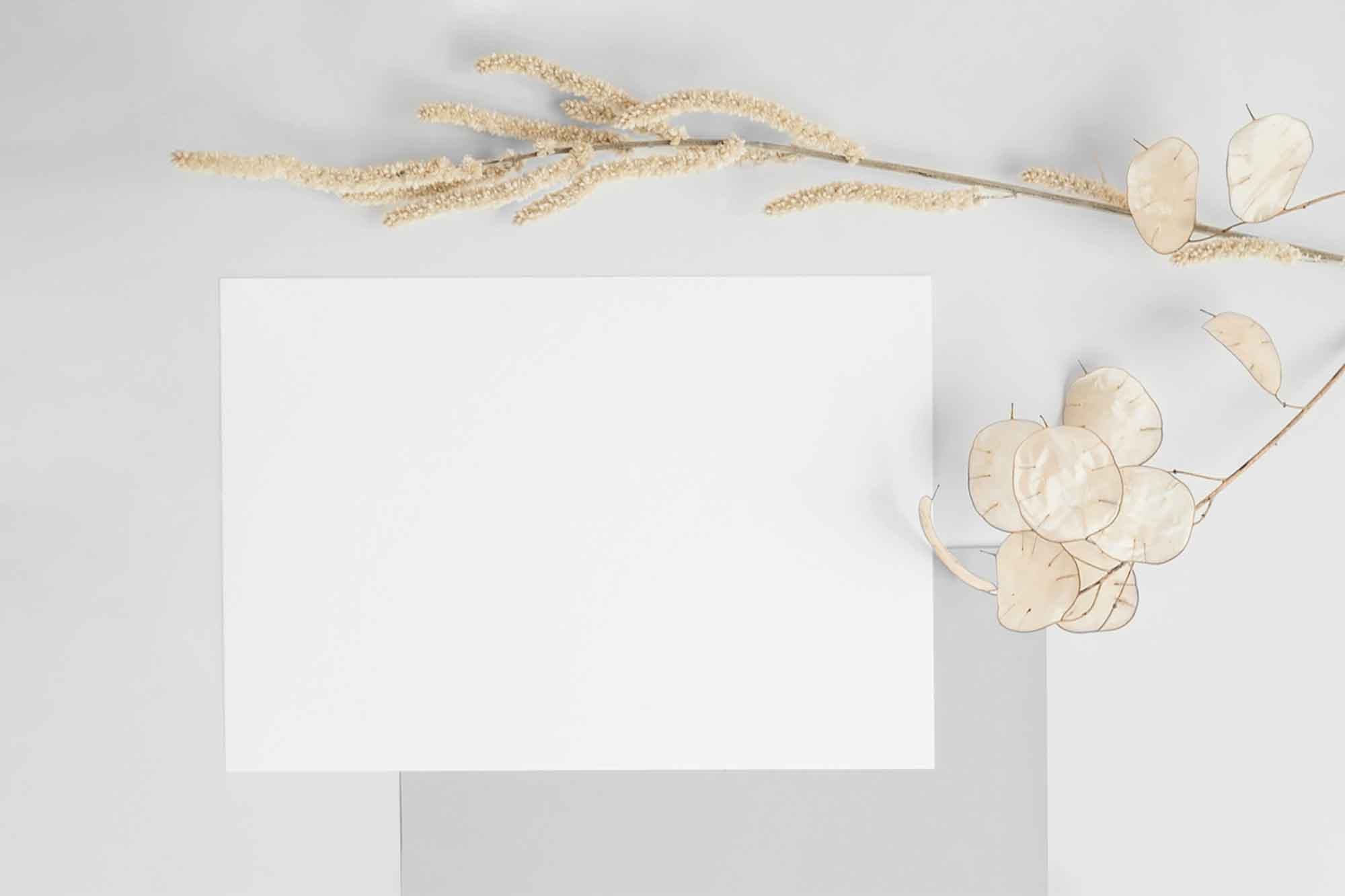 A5 Postcard with Envelope Mockup 2